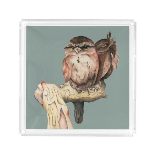 Owl Siblings Watercolor Portrait Acrylic Tray