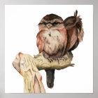 Owl Siblings Watercolor Portrait Poster