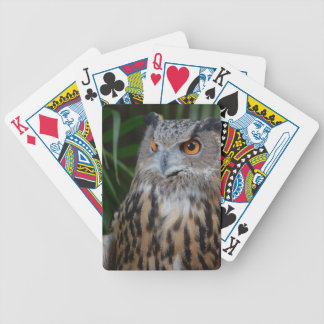 owl surprised right bird bicycle poker cards