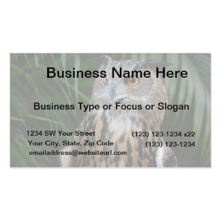 owl surprised right bird business card template