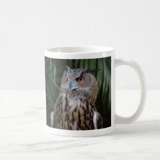 owl surprised right bird coffee mug
