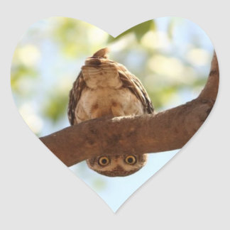 Owl Upside Down on a Heart Shaped Sticker