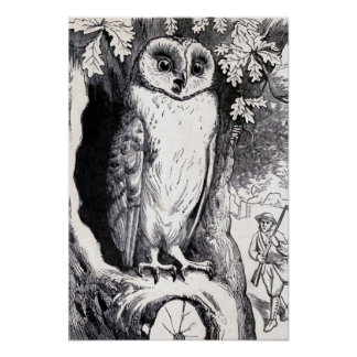 """Owl"" Vintage Illustration Poster"