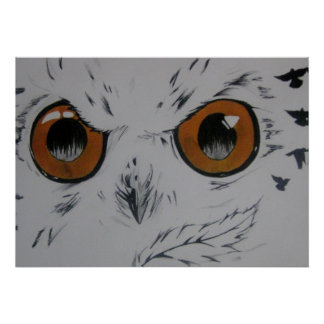 Owl with birds , My Drawing Poster