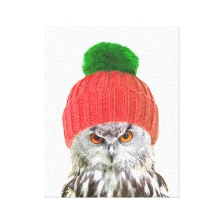 Owl with cap funny animal portrait canvas print