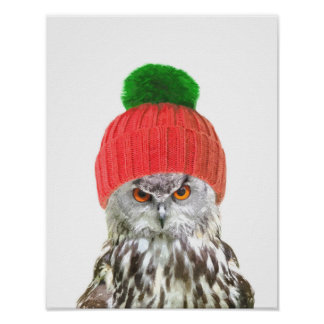 Owl with cap funny animal portrait poster