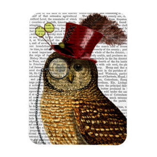 Owl With Top Hat 3 Rectangular Photo Magnet