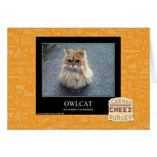 Owlcat Card