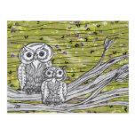 Owls and Butterflies Post Card