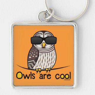 Owls are cool Silver-Colored square key ring