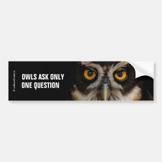 Owls Ask Only One Question: Spectacled Owl Bumper Sticker