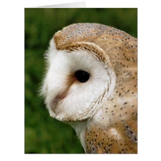 OWLS BIG GREETING CARD