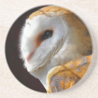 OWLS COASTER