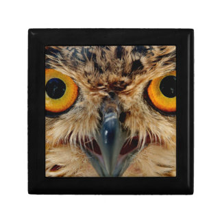 Owls Eyes Gift Box