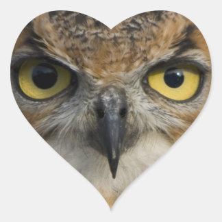 Owls Eyes Sticker