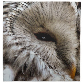 OWLS NAPKIN