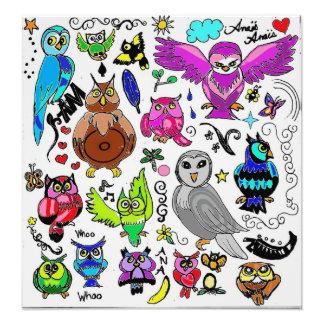 Owls Photographic Print