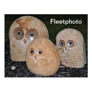 Owls Rock Postcards