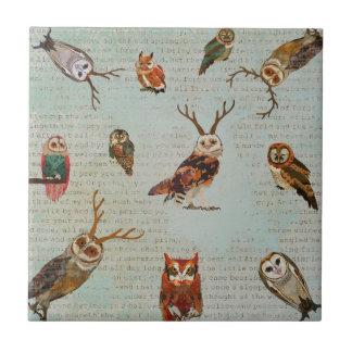 OWLS Tile
