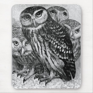 Owls, vintage engraving mouse pad