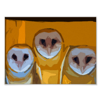 Owls with mama poster