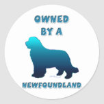 Owned by a Newfoundland Round Stickers