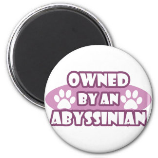 Owned by an Abyssinian Magnet