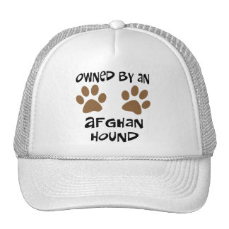 Owned By An Afghan Hound Hats