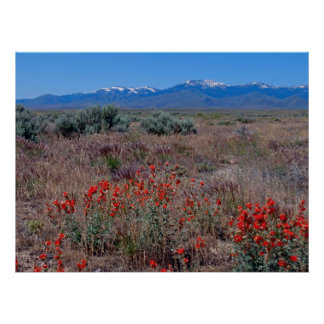Owyhee Mountains Poster