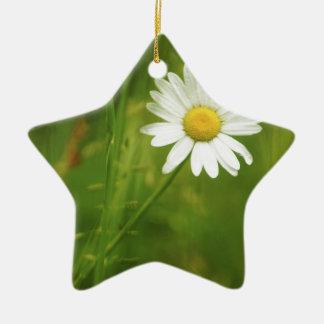 Ox-Eye Daisy Summertime Design Ceramic Star Decoration