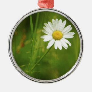 Ox-Eye Daisy Summertime Design Christmas Ornament