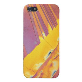 Oxalic Acid Crystals Case For iPhone 5/5S
