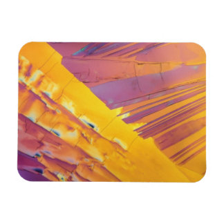 Oxalic Acid Crystals Rectangular Photo Magnet