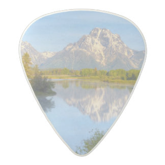 Oxbow Bend Acetal Guitar Pick