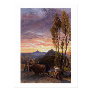 Oxen Ploughing at Sunset (w/c on paper) Postcard