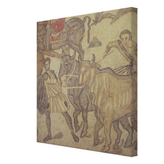Oxen transporting water, Roman mosaic Canvas Print