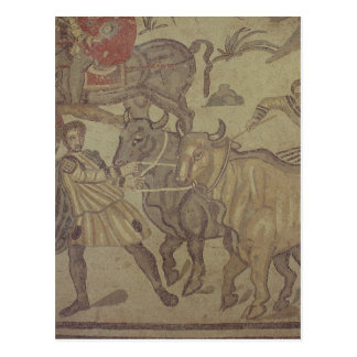 Oxen transporting water, Roman mosaic Postcard