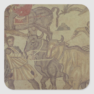 Oxen transporting water, Roman mosaic Square Sticker