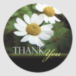 Oxeye Daisy Floral Thank You Envelope Seals Round Sticker