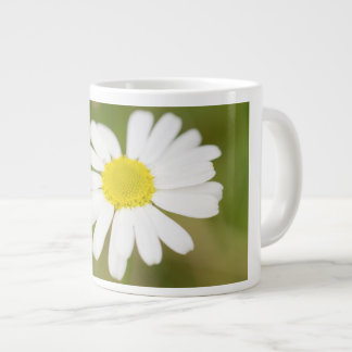 Oxeye Daisy Giant Coffee Mug