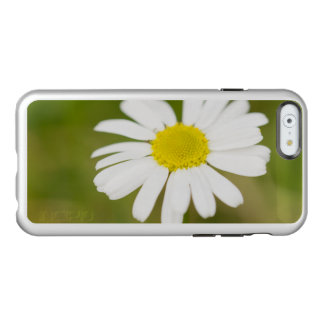Oxeye Daisy Incipio Feather® Shine iPhone 6 Case