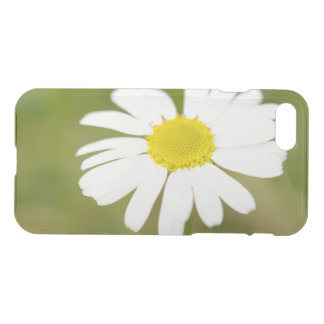 Oxeye Daisy iPhone 8/7 Case