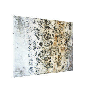 Oxidation MF Gallery Wrapped Canvas