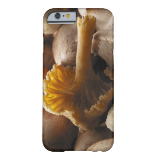 Oyster mushrooms, shiitake mushrooms, chestnut barely there iPhone 6 case
