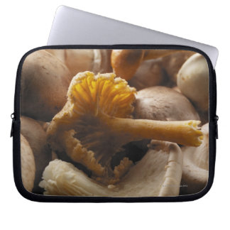 Oyster mushrooms, shiitake mushrooms, chestnut laptop sleeve