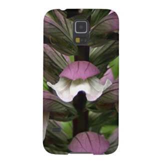 Oyster plant flower in bloom galaxy nexus cover