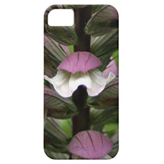 Oyster plant flower in bloom cover for iPhone 5/5S