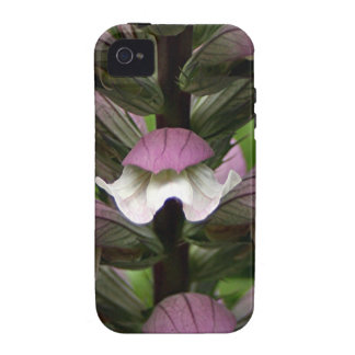 Oyster plant flower in bloom case for the iPhone 4
