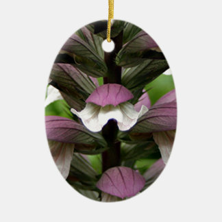 Oyster plant flower in bloom christmas ornament