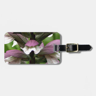 Oyster plant flower in bloom tag for bags